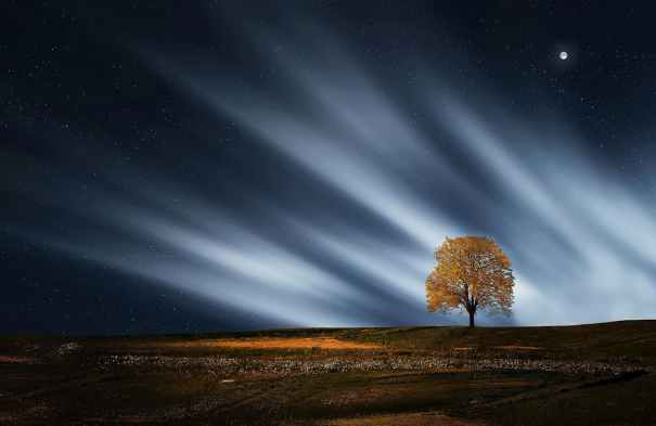 landscape nature night relaxation